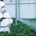 pesticidi-u-hrani